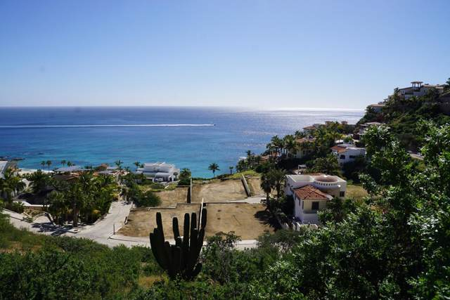 Calle Tiburon, San Jose Corridor, BS  (MLS #19-3566) :: Los Cabos Agent