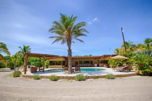 Ranch Catarina, San Jose del Cabo, BS  (MLS #19-3576) :: Coldwell Banker Riveras
