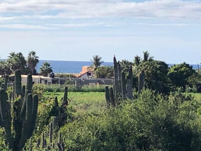 Calle Sin Nombre, Pacific, BS  (MLS #19-3610) :: Los Cabos Agent