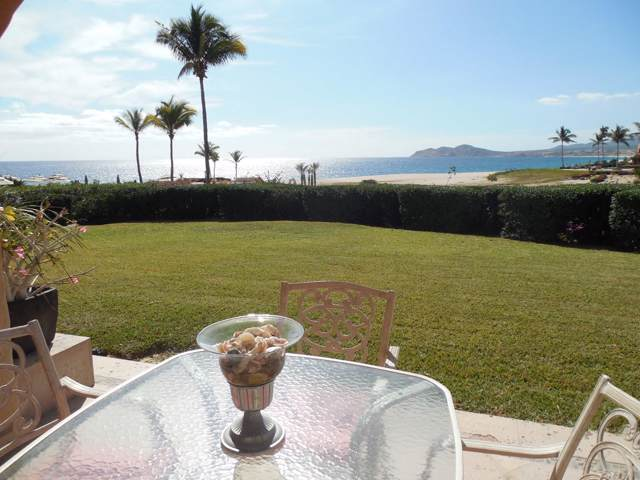 Carret. Transp 19.5 Sjd Bcs Mx #103, San Jose Corridor, BS  (MLS #19-3622) :: Own In Cabo Real Estate