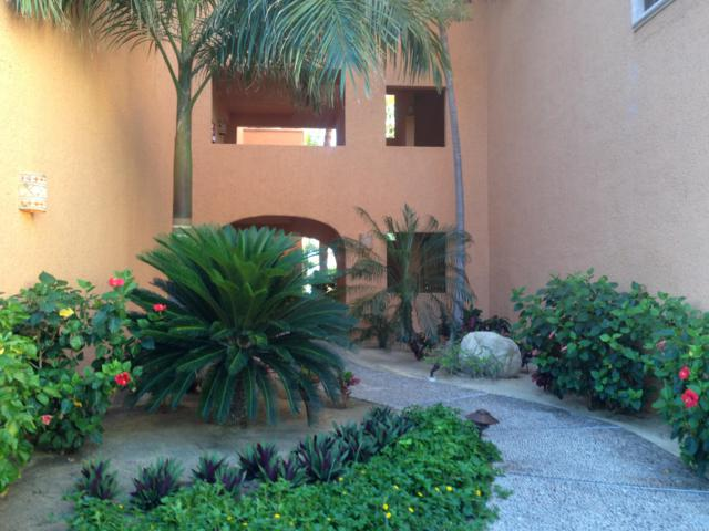KM 29 Transpeninsular Hwy F112, San Jose del Cabo, BS  (MLS #19-396) :: Los Cabos Agent