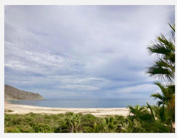 La Huerta Los Frailes, East Cape, BS  (MLS #19-402) :: Los Cabos Agent