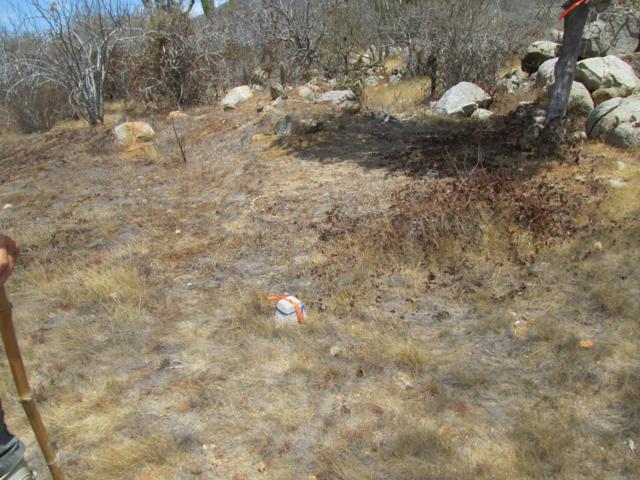 Manz Xix 2B, East Cape, BS  (MLS #19-421) :: Los Cabos Agent