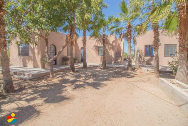Calle Sin Nombre, Pacific, BS  (MLS #19-454) :: Los Cabos Agent
