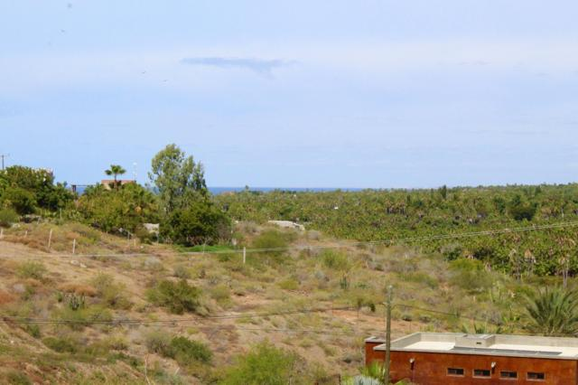 Calle De Acceso 1, Pacific, BS  (MLS #19-545) :: Own In Cabo Real Estate