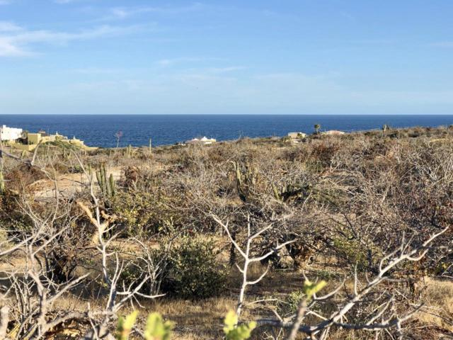 Rancho Tortuga, Mza 5, Lot 3, East Cape, BS  (MLS #19-680) :: Own In Cabo Real Estate