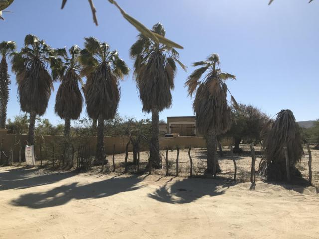 Santa Maria Street, East Cape, BS  (MLS #19-701) :: Own In Cabo Real Estate