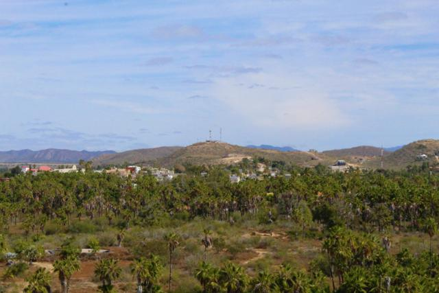 Guaycura, Pacific, BS  (MLS #19-778) :: Own In Cabo Real Estate