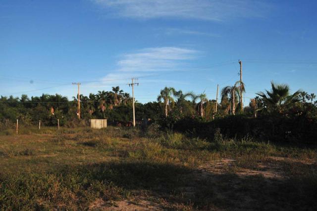 Calle Sin Nombre, Pacific, BS  (MLS #19-79) :: Los Cabos Agent