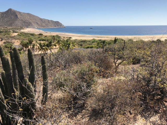 Los Frailes, La Huerta, I-9&10, East Cape, BS  (MLS #19-803) :: Los Cabos Agent