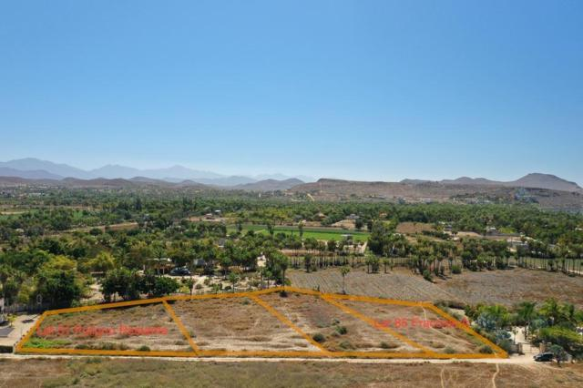 SN San Sebastian Oasis Lot 85, Pacific, BS  (MLS #19-886) :: Los Cabos Agent
