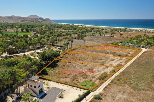SN San Sebastian Oasis Lot 31, Pacific, BS  (MLS #19-887) :: Los Cabos Agent