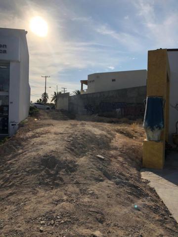 Transpeninsular Highway Mezquite, San Jose del Cabo, BS  (MLS #19-948) :: Los Cabos Agent