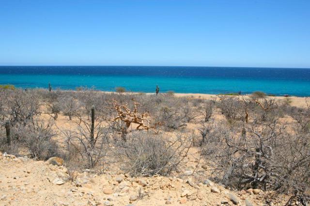 Montemar View Lot Jordahl L3, East Cape, BS  (MLS #19-965) :: Los Cabos Agent