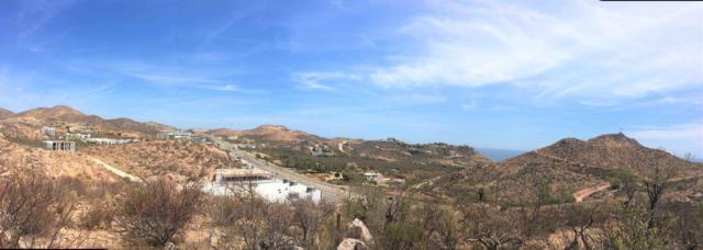 Quinta Venado Blanco Lt 5 Mz13, San Jose Corridor, BS  (MLS #19-970) :: Los Cabos Agent