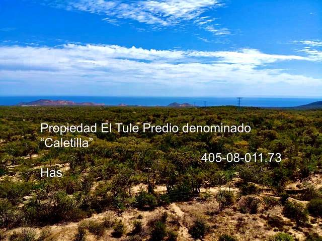 Chileno /Inland, Cabo Corridor, BS  (MLS #20-1035) :: Own In Cabo Real Estate