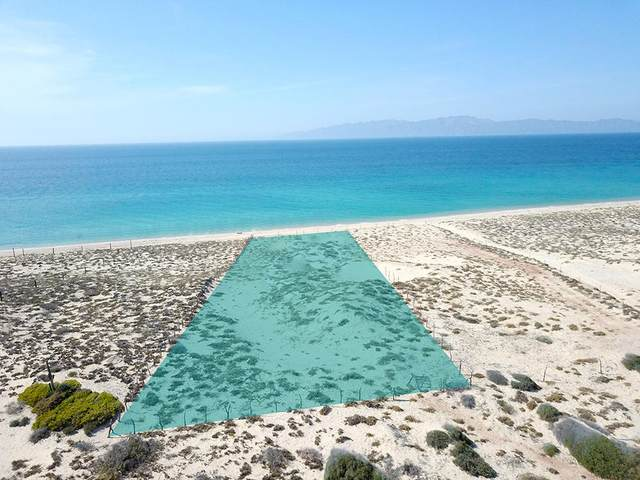 165 Lot, La Paz, BS  (MLS #20-1052) :: Own In Cabo Real Estate