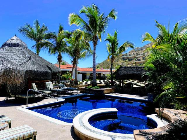 Plaza De Las Flores #5, Cabo San Lucas, BS  (MLS #20-1096) :: Los Cabos Agent