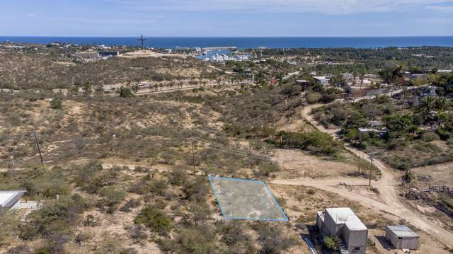 Camino A Cabo Del Este, San Jose del Cabo, BS  (MLS #20-1123) :: Own In Cabo Real Estate