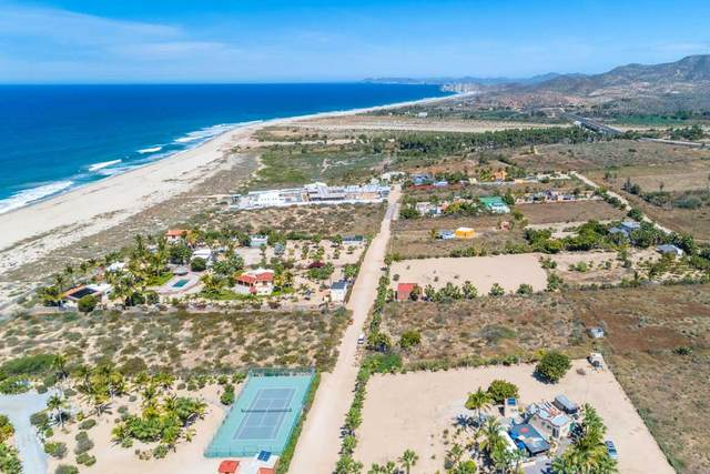 Calle S/N, Pacific, BS  (MLS #20-1132) :: Own In Cabo Real Estate