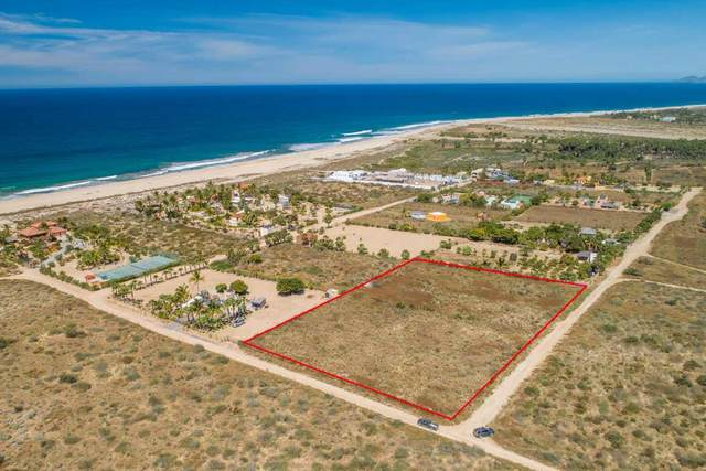 Calle S/N, Pacific, BS  (MLS #20-1133) :: Own In Cabo Real Estate
