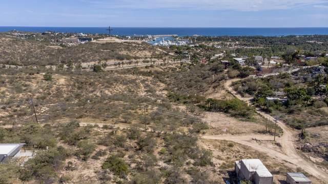 Camino A Cabo Del Este, San Jose del Cabo, BS  (MLS #20-1141) :: Own In Cabo Real Estate