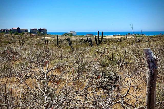 Calle S/N, Pacific, BS  (MLS #20-1149) :: Los Cabos Agent