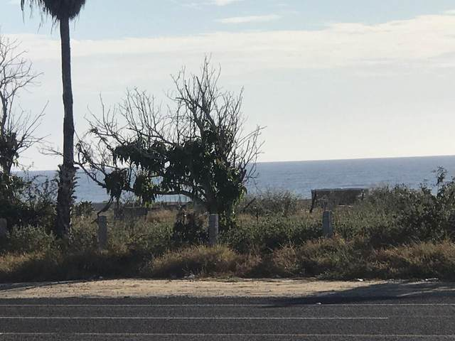 Carretera Transpeninsular Mx 1, Pacific, BS  (MLS #20-1220) :: Own In Cabo Real Estate