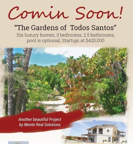 The Gardens Of Todos Santos, Pacific, BS  (MLS #20-1254) :: Coldwell Banker Riveras