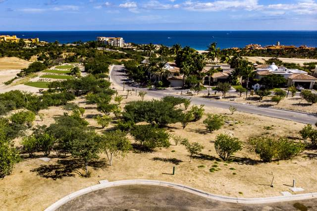 Las Colinas, Cabo Corridor, BS  (MLS #20-13) :: Own In Cabo Real Estate