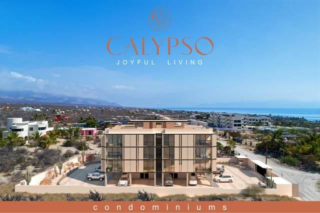 Isla Guadalupe Isla San Jorge #301, La Paz, BS  (MLS #20-1319) :: Coldwell Banker Riveras