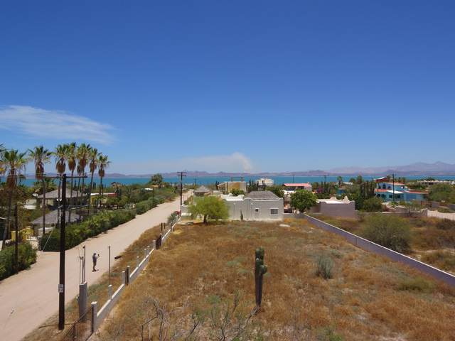 Calle 3, La Paz, BS  (MLS #20-1345) :: Own In Cabo Real Estate