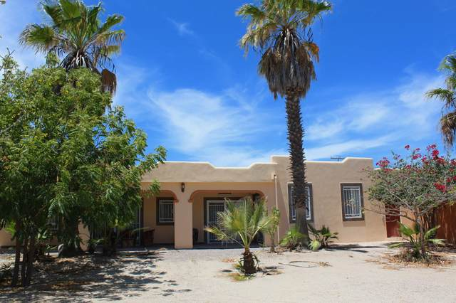 s/n Palo Amarillo Esq Calle 6, La Paz, BS  (MLS #20-1346) :: Own In Cabo Real Estate