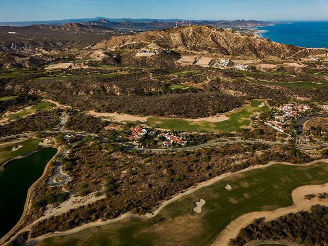 Oasis Palmilla, San Jose Corridor, BS  (MLS #20-1358) :: Own In Cabo Real Estate