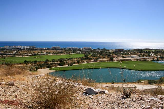 42 Ac Via Rs2-5, San Jose del Cabo, BS  (MLS #20-1362) :: Ronival