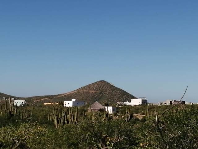 2 Todos Santos, La Paz, BS 23080 (MLS #20-140) :: Own In Cabo Real Estate