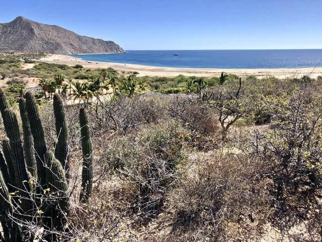 Los Frailes, La Huerta, I-7/8, East Cape, BS  (MLS #20-1423) :: Ronival