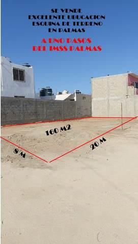 Lote 002 Palma Bifurcada, Cabo San Lucas, BS  (MLS #20-1451) :: Ronival