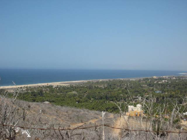 Sin Nombre, Pacific, BS  (MLS #20-1469) :: Own In Cabo Real Estate