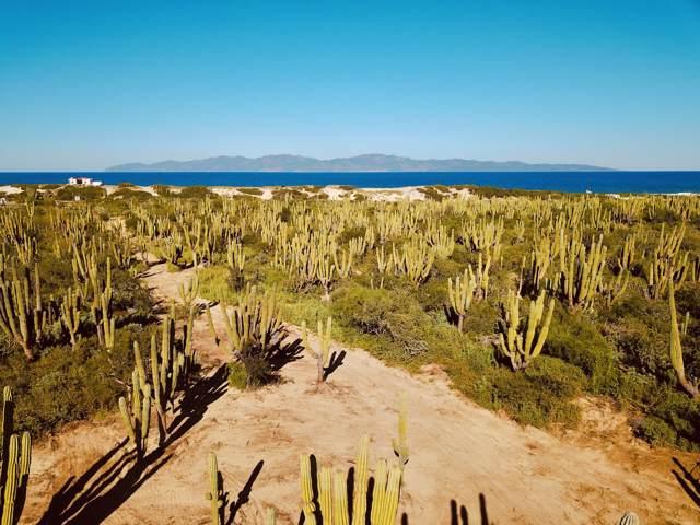 Calle Tuna Se, La Paz, BS  (MLS #20-148) :: Los Cabos Agent