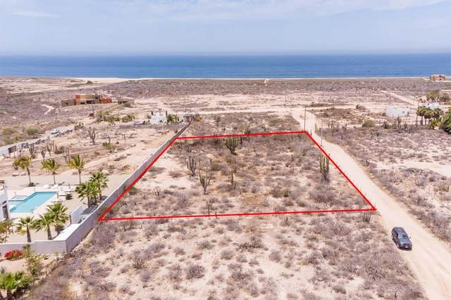 Calle Pitahaya, Pacific, BS  (MLS #20-1507) :: Ronival