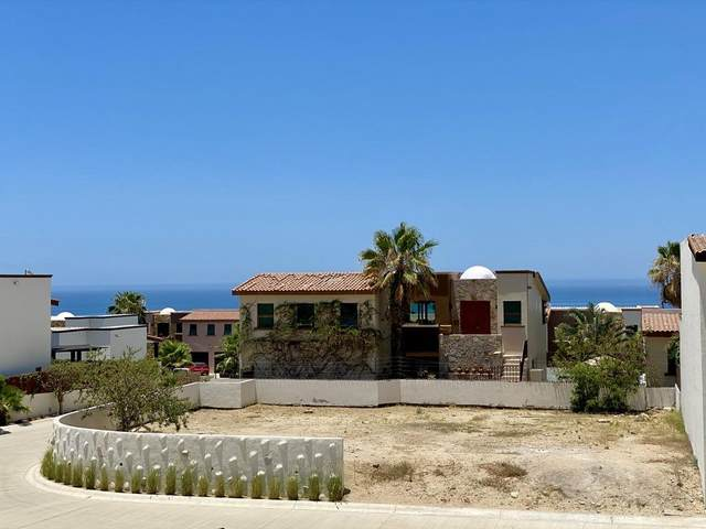 Ciruelos, Cabo Corridor, BS  (MLS #20-1509) :: Own In Cabo Real Estate