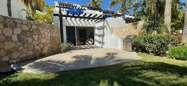 Calle Frailes N, San Jose del Cabo, BS  (MLS #20-1529) :: Ronival