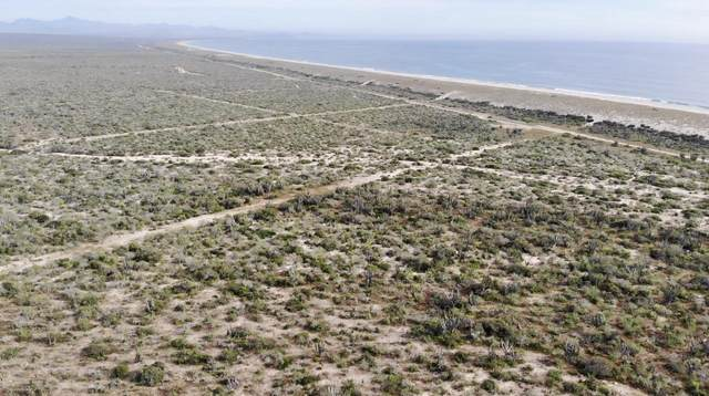 Lot. 38 Agua Blanca Mz. 18, Pacific, BS  (MLS #20-1540) :: Own In Cabo Real Estate