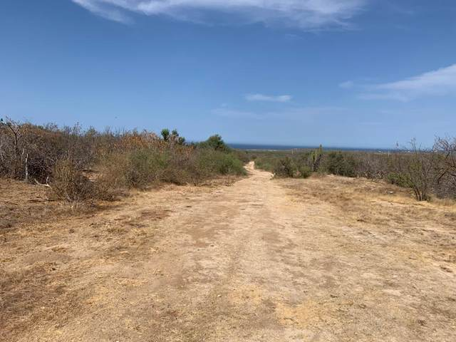 Fed Hwy 1 Km 103 Buenavista, East Cape, BS  (MLS #20-1594) :: Ronival