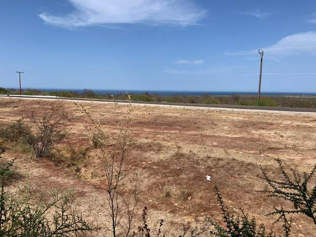 Fed Hwy 1 Km 103 Buenavista, East Cape, BS  (MLS #20-1596) :: Ronival