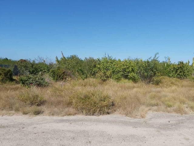 276 El Cardon, La Paz, BS  (MLS #20-16) :: Own In Cabo Real Estate