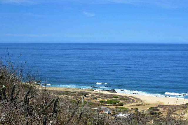Los Cerritos, Pacific, BS  (MLS #20-1718) :: Own In Cabo Real Estate