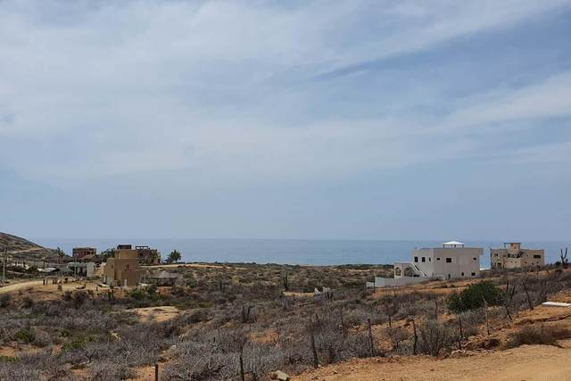 Los Cerritos, Pacific, BS  (MLS #20-1719) :: Own In Cabo Real Estate