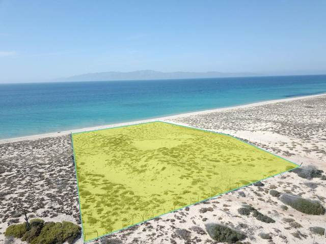 Lot 164 + 165, La Paz, BS  (MLS #20-1766) :: Own In Cabo Real Estate
